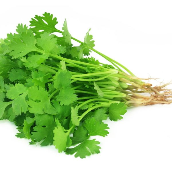 Coriander Leaves, Dhania Patti- 50g